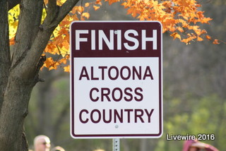 Girls' cross country team finishes strong