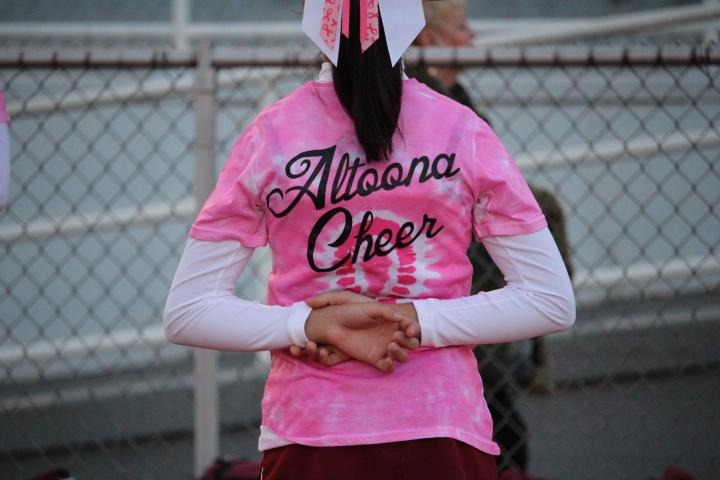 9th+grader+Autumn+Emnigh-bellon+cheers+on.+The+white+swag+shows+breast+cancer+support+.