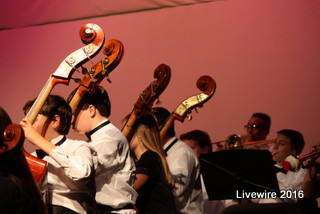 Orchestra Concert 12-13