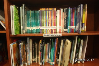 The AAJHS library