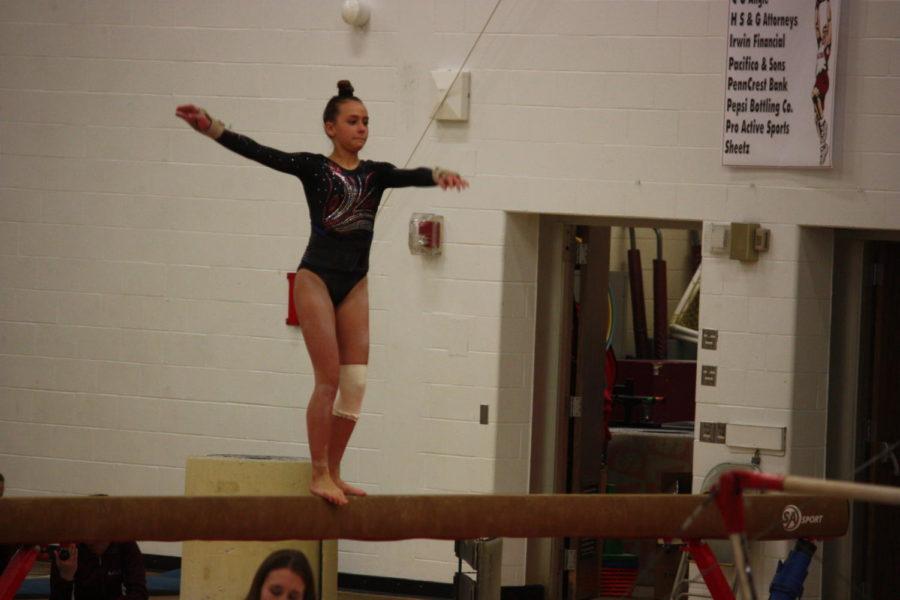 Gymnastics season comes to end