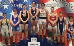 Wrestling season ends in win at states