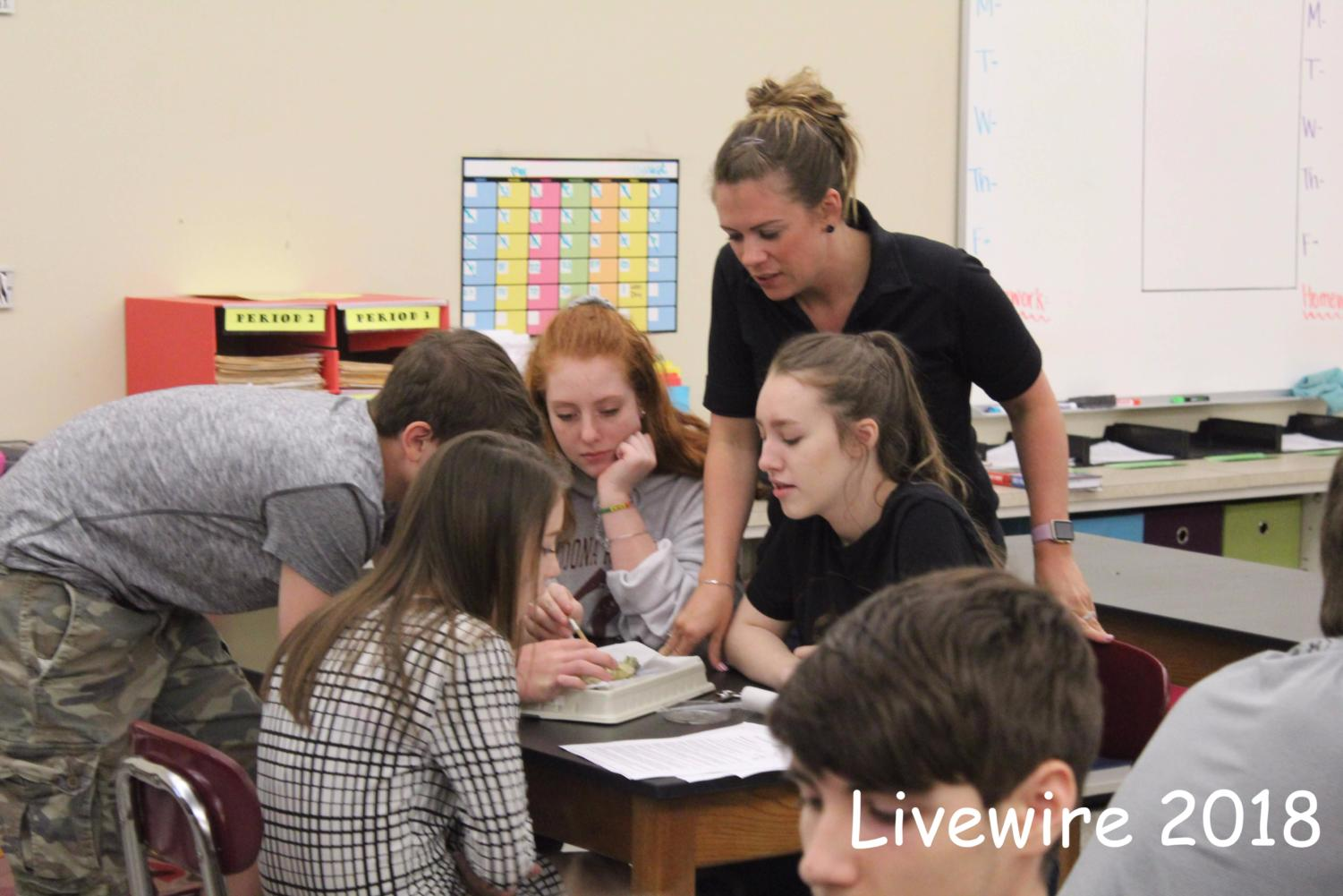 Cool!  Mrs. McAleer observes one of her groups. McAleer let her students pick their groups.