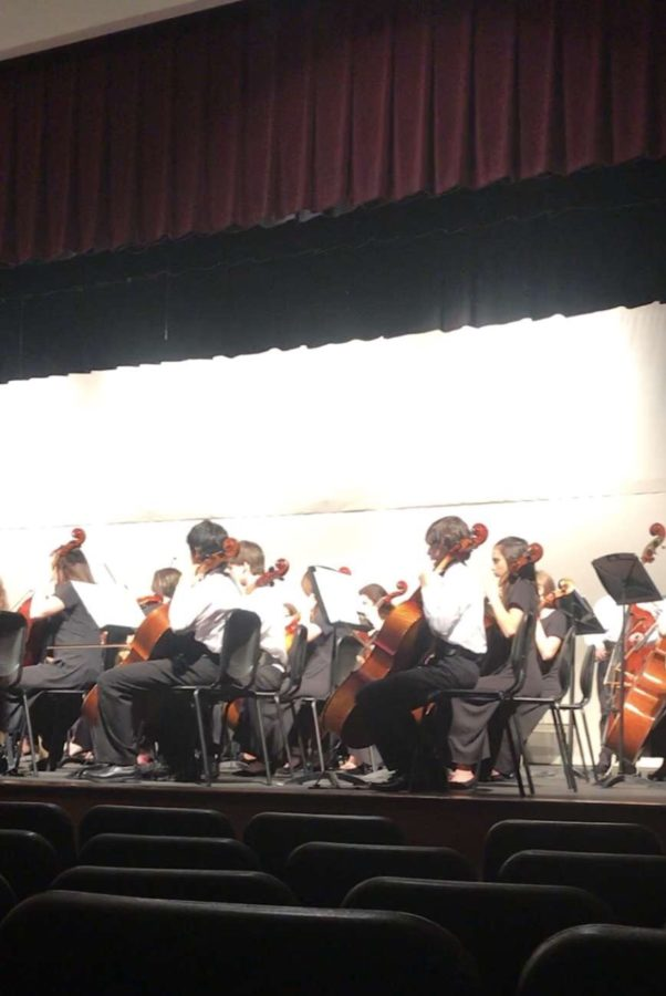 A lot of cellos play for the junior high.  During the concert, the cello section played loud and clear.