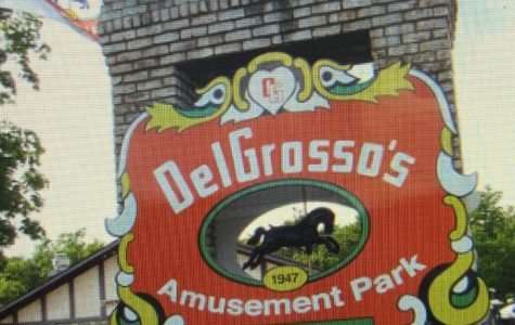 DelGrosso's shouldn't be teen's first pick for job