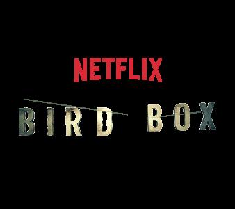 """The book """"Bird Box"""" becomes Netflix original"""