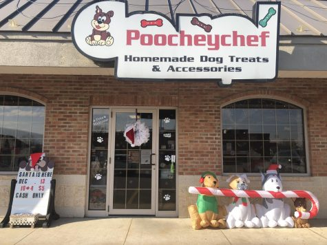 Poochey Chef, a local, small, pet business located in Ducansville, PA, provides the animal community with many tasty treats and so much more!