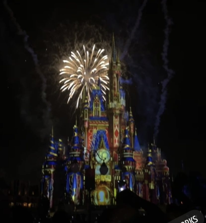 The pretty fireworks make everything come alive in Disney World.